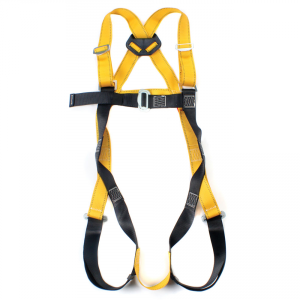 RGH 1 Rear D Safety Harness